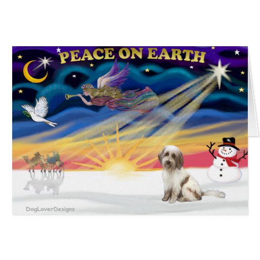 Xmas Sunrise - Tibetan Terrier (BrnW) Cards