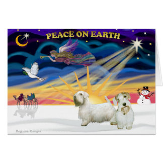 Xmas Sunrise - Two Sealyham Terriers Greeting Card