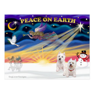 Xmas Sunrise - Two West Highland Terriers Postcards