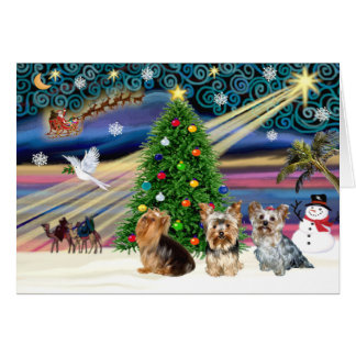 XmasMagic Yorkie Trio Card