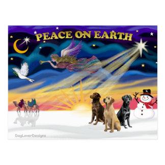 XmasSunrise-3 Labrador Retrievers Postcard