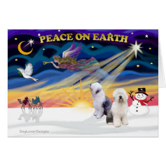 XmasSunrise-Two-Old English Sheepdog Card