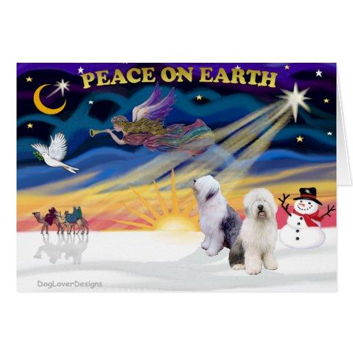 XmasSunrise-Two-Old English Sheepdog Greeting Card