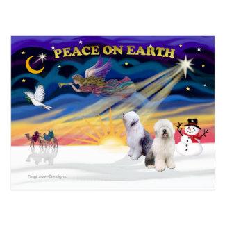XmasSunrise-Two-Old English Sheepdog Post Cards