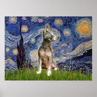 Xoloitzcuintle (K) - Starry Night Poster