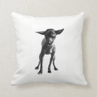Xoloitzcuintle Pillow