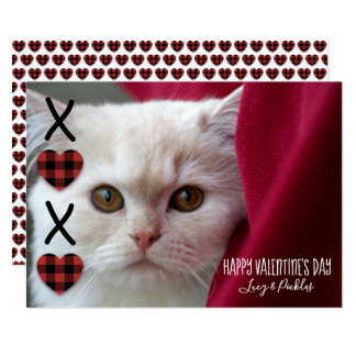 XOXO Plaid Valentine's Day Photo Card