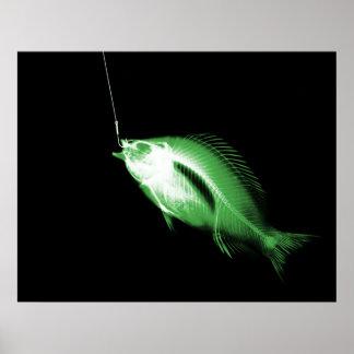 XRAY HOOK FISH BLACK GREEN POSTER