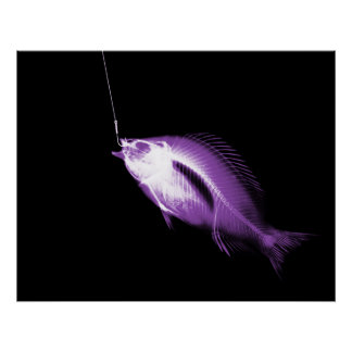 XRAY HOOK FISH BLACK PURPLE PRINT