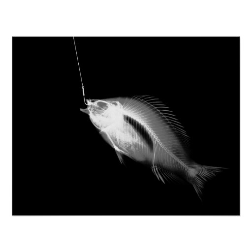 XRAY HOOK FISH BLACK WHITE PRINT