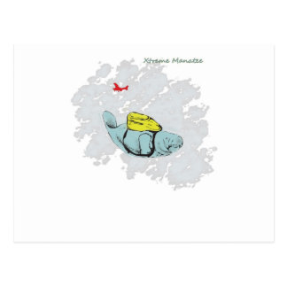 Xtreme Manatee Skydiving Postcard