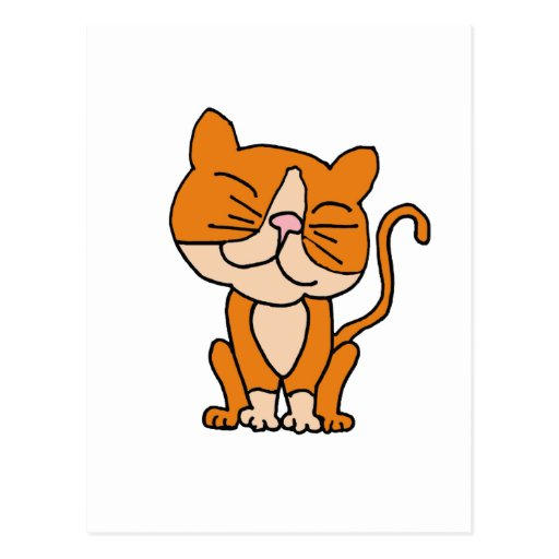 XX- Cute Orange and White Kitty Cat Post Cards