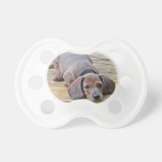 XX- Dachsund Puppy Dog Photography Dummy