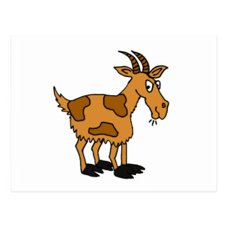 XX- Funny Cartoon Goat Post Card