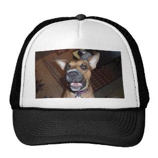 XX- Funny Demonic Bat Eared Puppy Dog Trucker Hat