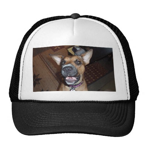XX- Funny Demonic Bat Eared Puppy Dog Hats