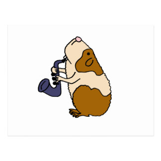 XX- Guinea Pig Playing the Saxophone Post Cards