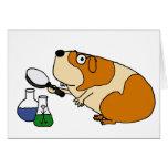 XX- Guinea Pig Scientist Humour