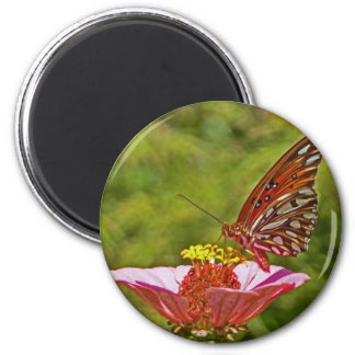 XX- Monarch Butterfly on Zinnia Magnets
