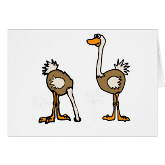 XX- Ostriches in Sand Card