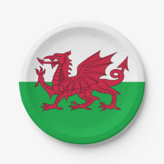 Y Ddraig Goch: Welsh Flag Paper Party Plate 7 Inch Paper Plate