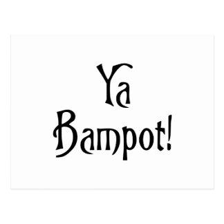 Ya Bampot Funny Scottish Slang Saying Postcard