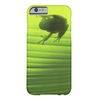 Yachiyo, Chiba Prefecture, Japan 2 Barely There iPhone 6 Case