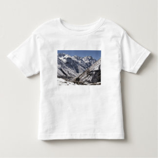 Yak near Mt. Jhomolari,  Jangothang Jigme Dorji Toddler T-Shirt