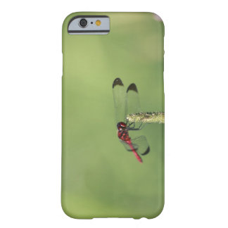 Yamanashi Prefecture, Honshu, Japan Barely There iPhone 6 Case