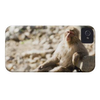 Yamanouchi, Chubu, Nagano Prefecture, Japan 2 iPhone 4 Case-Mate Case