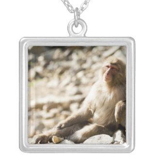 Yamanouchi, Chubu, Nagano Prefecture, Japan 2 Silver Plated Necklace