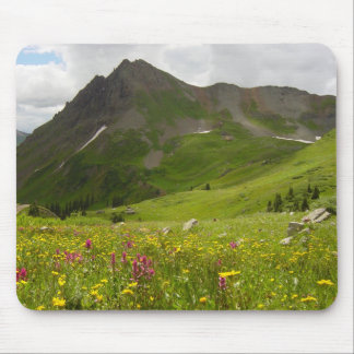 Yankee Boy Basin, Colorado Mouse Pad