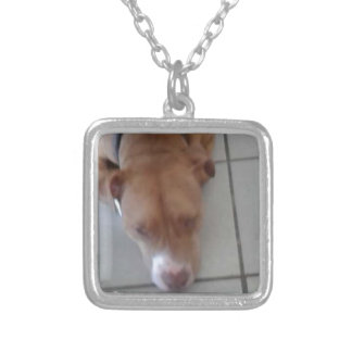 Yankee Silver Plated Necklace