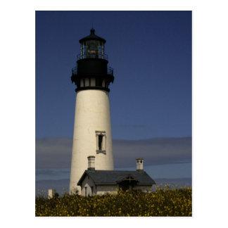 Yaquina Head Lighthouse--NEW Postcards