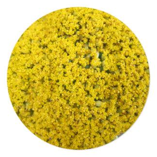 "Yarrow Flower Golden Yellow 5.25"" Square Invitation Card"