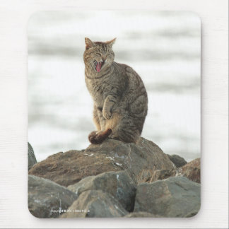 Yawning Cat on the Rocks Mousepad Mouse Pads