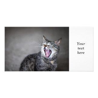 Yawning cat custom photo card
