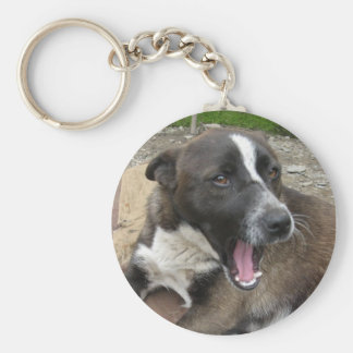 Yawning dog keychain