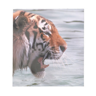 Yawning Tiger in Water Notepad