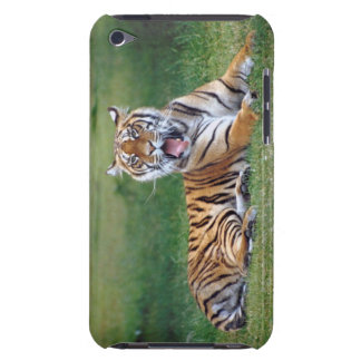 Yawning Tiger iPod Touch Cases