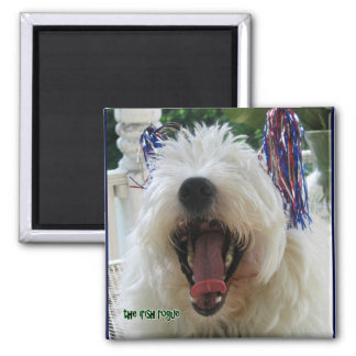 Yay USA Westie Square Magnet