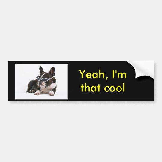 Yeah, I'm that cool bumper sticker