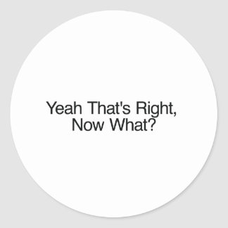 Yeah That's Right, Now What? Round Stickers