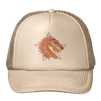 Year of the Dragon mans hat.