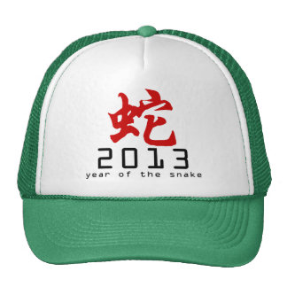 Year of The Snake Symbol 2013 Mesh Hat