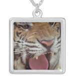 Year of Tiger Necklace