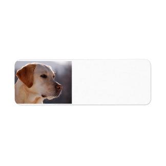 yellow 3 Labrador_Retriever.png Return Address Label