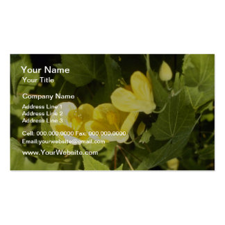 yellow Abutilon Species Flowering Maple flowers Pack Of Standard Business Cards