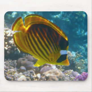 Yellow and Black Angel Fish Mouse Mat