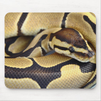 Yellow and Black Ball Python 3 Mouse Pad